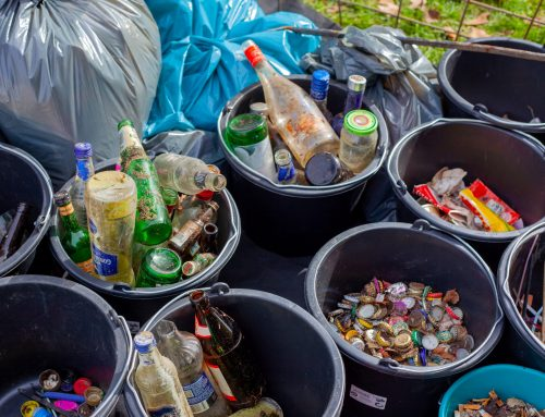 Waste Reduction Tips for Businesses